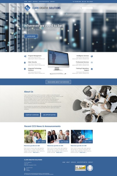 Technology Solutions & Professional Services Website Design