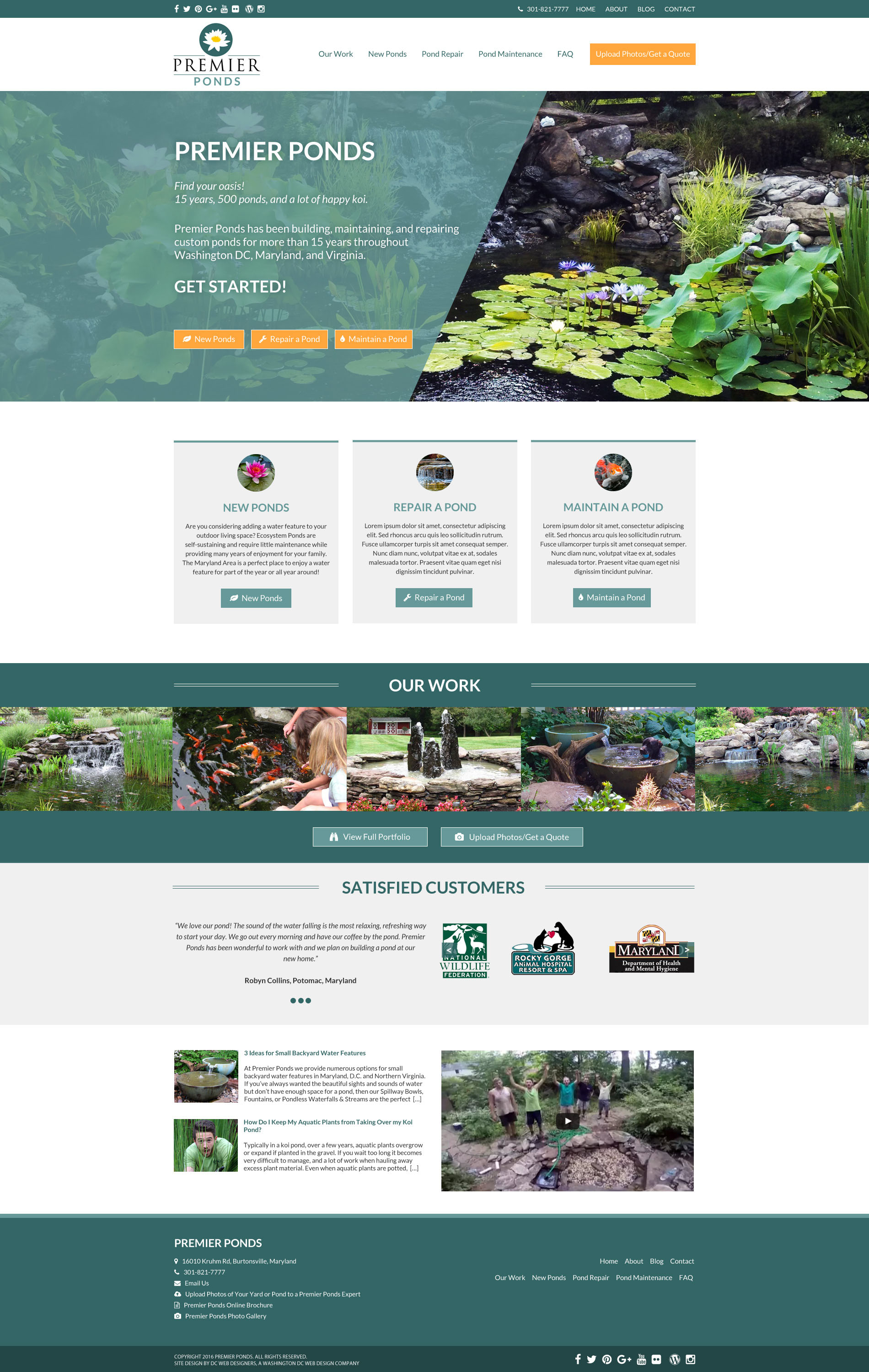 Web Design Ponds Water Features Danielle Hobeika Web Design Graphic Design And Photography
